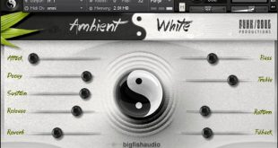AMBIENT WHITE